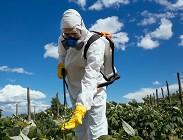 Prosecco, glifosato, pesticidi e sostanze nocive