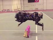 robot, corpo umano, salta, cammina