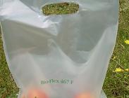 Sacchetti biodegradabili, Ue, legislazione, inquinamento, plastica