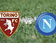 Torino Napoli live streaming