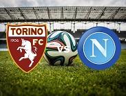 Torino Napoli diretta live streaming