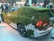 Volvo V60 ricoperta di muschio